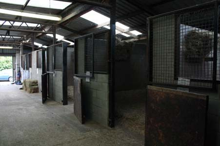 view into our stables